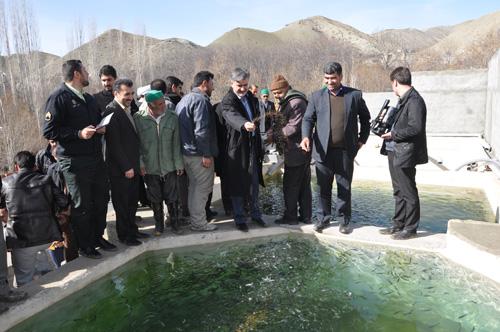 دکتر عبدالرضا عزیزی_بازدید از استخر پرورش ماهی روستای زو